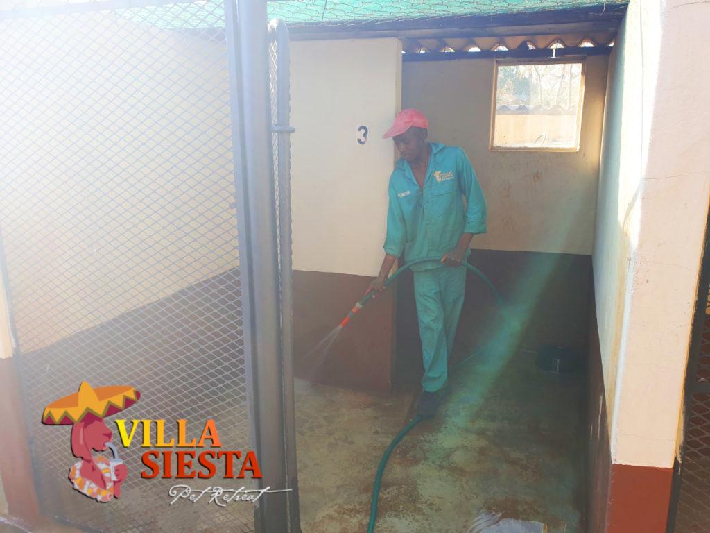 Villa Siesta Pet Retreat - Clean kennels