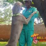 Villa Siesta - Meet the team - Lucky