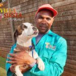 Villa Siesta Pet Retreat - Lucky