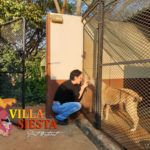 Villa Siesta Pet Retreat - Your pets home away from home