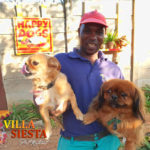Villa Siesta Pet Retreat - Lucky - Happy Dogs