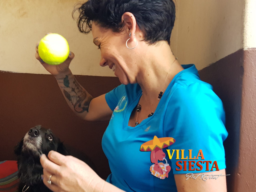 Villa Siesta - meet the team