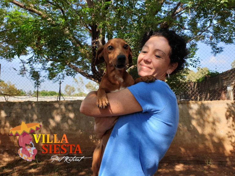 Villa Siesta Pet Retreat - Joy with happy dog