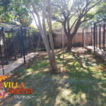 Villa Siesta Pet Retreat - Cattery in pretty morning light