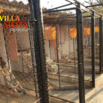 Villa Siesta Pet Retreat - Cattery cages