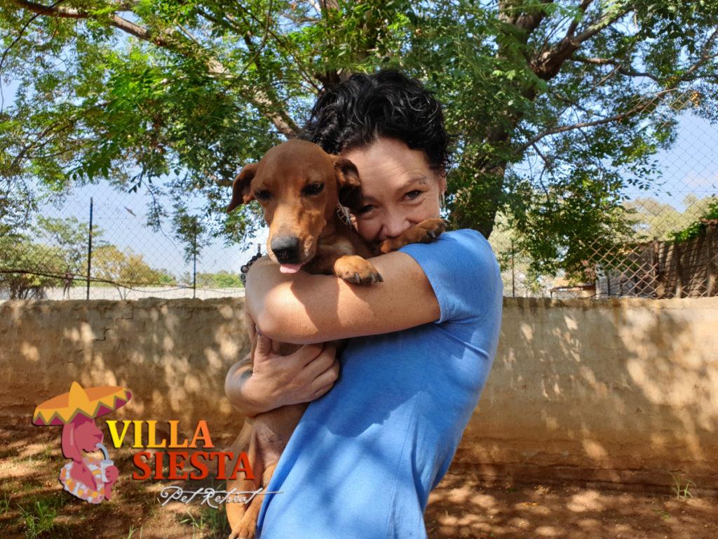 Villa Siesta Pet Retreat - Joy with snuggles puppy