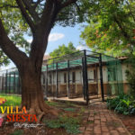 Villa Siesta Pet Retreat - The cattery is a peaceful environment