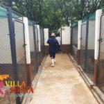 Villa Siesta Pet Retreat - Spacious kennels