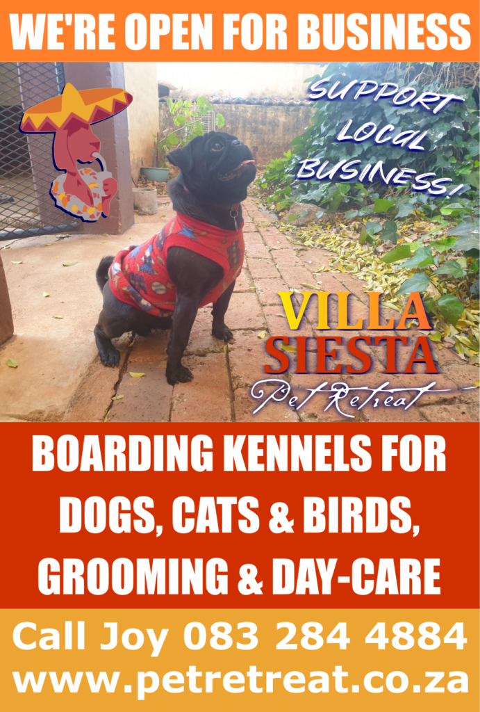 Villa Siesta Pet Retreat - Open for business!